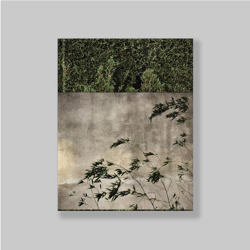 Apres-tout-Photographies-et-textes-COLLECTOR-S-EDITION-15-COPIES